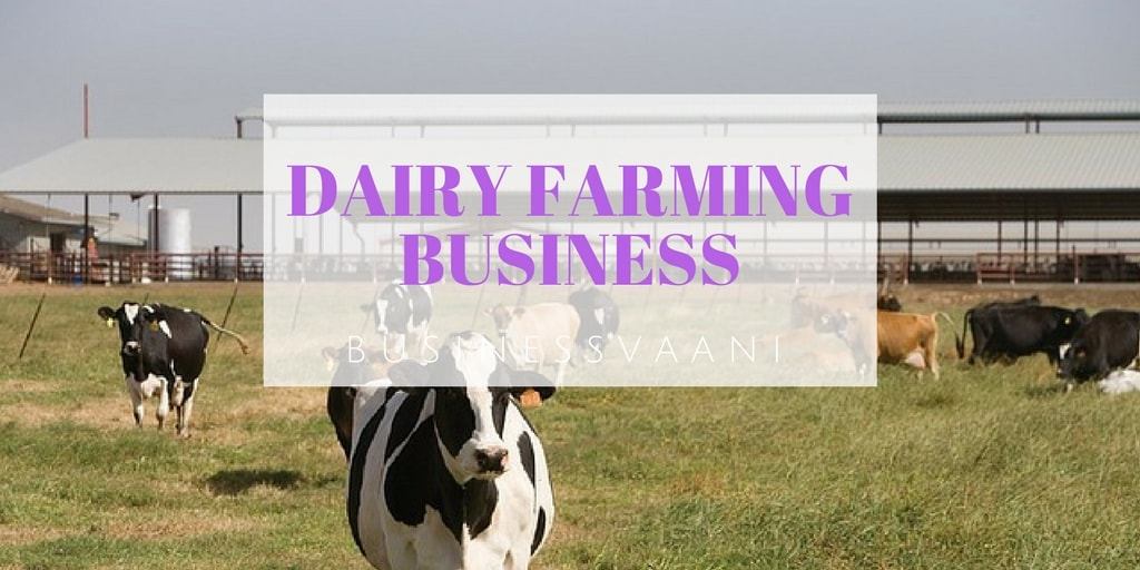 business plan dairy farming