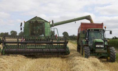 profitable agriculture business ideas