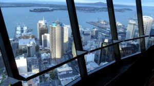 profitable business opportunities in Auckland, New Zealand