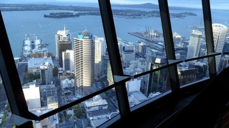 10 Best Business Opportunities & Investment Ideas For New Zealand